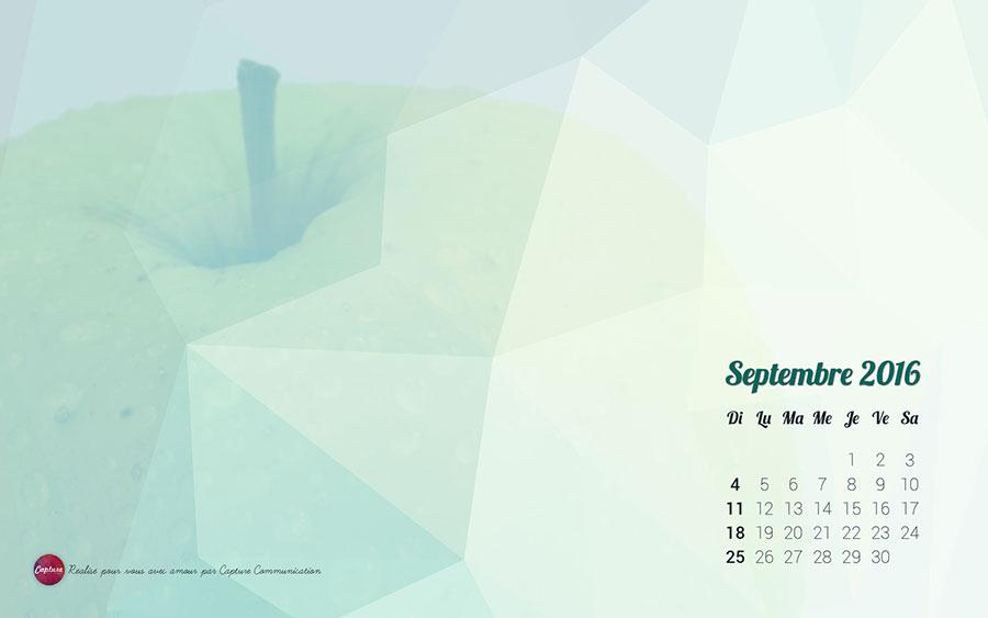 Annee_2016_Fonds_Ecran_Septembre