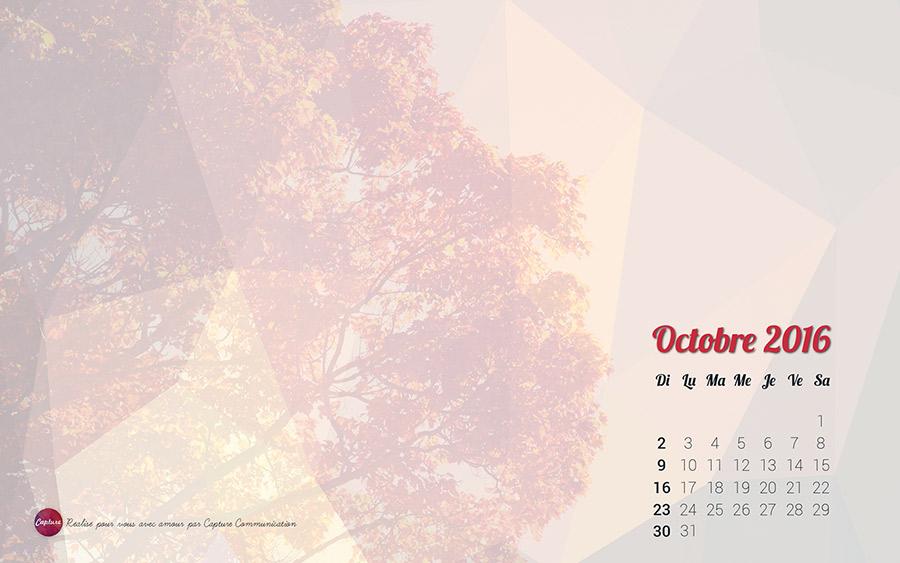 Annee_2016_Fonds_Ecran_Octobre